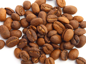 Buy Geisha Coffee from Boquete Panama